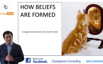 How are Beliefs formed? A study of the structure of beliefs